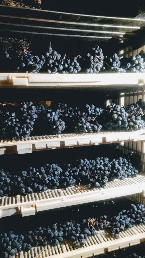 appassimento uve - vini dolci cg